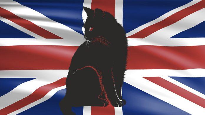 Macska zászlóval