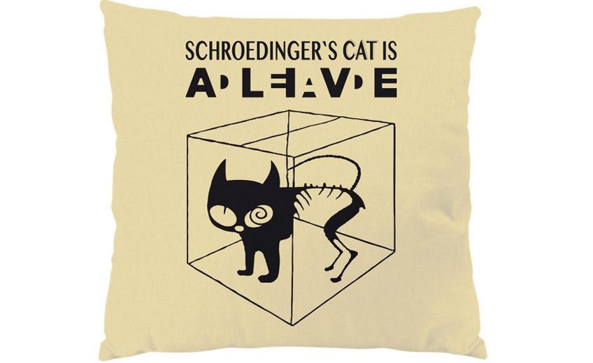 Schrödinger macskapárnája